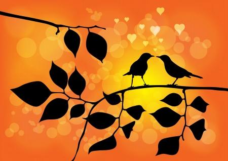 pajaritos en un arbol: Los p�jaros del amor en un �rbol con la puesta del sol en el fondo