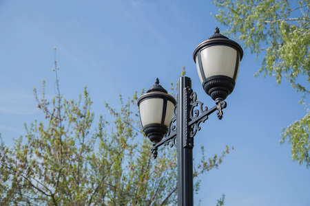 electric avenue: Street lamp in the park