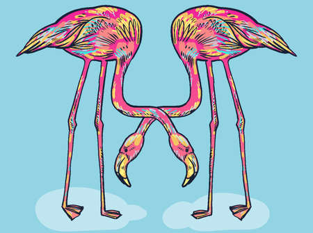 flat foot: Pink flamingo hand-pickted and hand-drawn illustration isolated Illustration