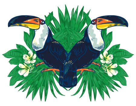 Vector illustration of a Toucan, handpicked and hand-drawn bird. Tropic flower