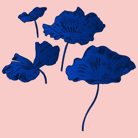 exotic flowers: Exotic flowers set. Botanical vector vintage illustration.