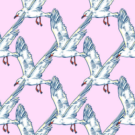 ornithologist: Gull flight bird and seabird, seamless pattern