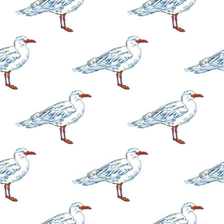 ornithologist: Gull flight bird and seabird . Sea. Seamless pattern