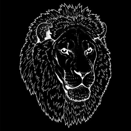Beautiful lion artwork. Detailed.African predator.