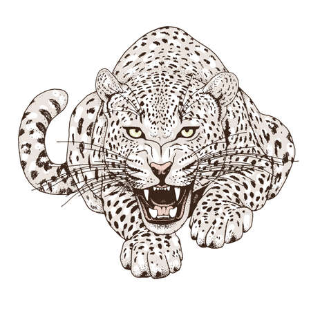 Leopard face tattoo ,Vector illustration, print Vectores