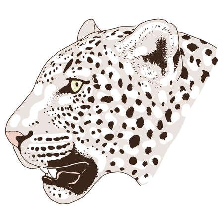 Leopard face tattoo ,Vector illustration, print Vetores