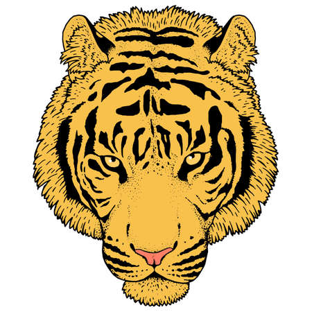 Tiger head illustration Vector.