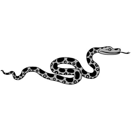 Vector illustration of tropical snake