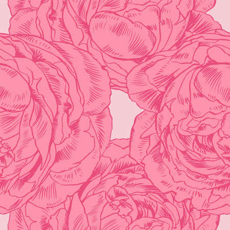 petal: Hand-drawing peonies. Vector graphic flowers. Decorative background for cards, invitations. Template greeting card. Illustration