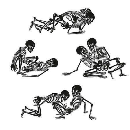 Menschliches Skelett festgelegt. Standard-Bild - 88581960