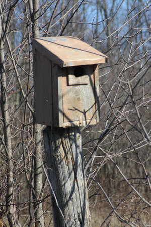 Swallow nesting box attached to post at edge of a farmers field.