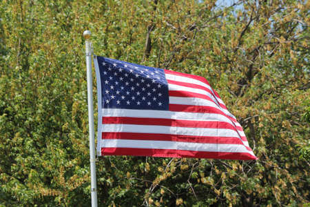 American Flag  Stars   Stripes  gently waving in a light breeze agaist a back ground of green tree branches photo