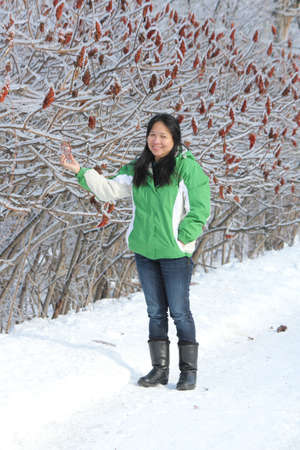 staghorn: Mature Asian looking woman pointing to ice formed on the Bobs of a Staghorn Sumac tree after a ice storm