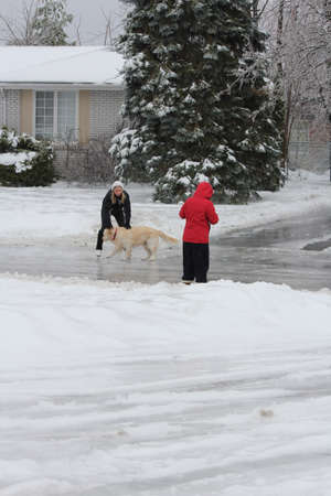 A young girl stopping to play with a dog while skating on an ice covered road, older friend walking with her