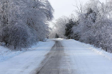Ice and snow covering roadway and trees after a fresh winter storm of freezing rain and snow