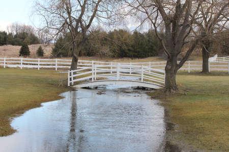 footbridges: Little white footbridge spanning a ditch full of water