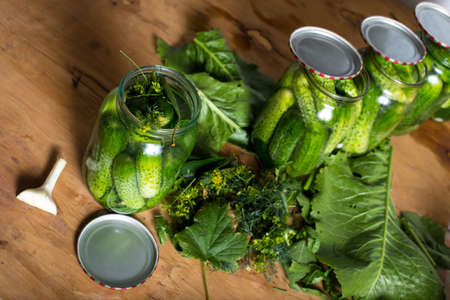 cans full of cucumbers with kitchen herbs prepared for canning on a table