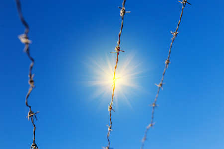 Barbed wire against the blue sky with a shining sun. How deprivation of liberty changes a person.