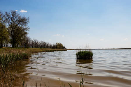 Freshwater lake with trees on a bank and clear blue sky above. Stock fotó