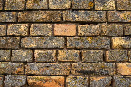 Old bricks wall close up covered with moss. wall of old castle Banque d'images
