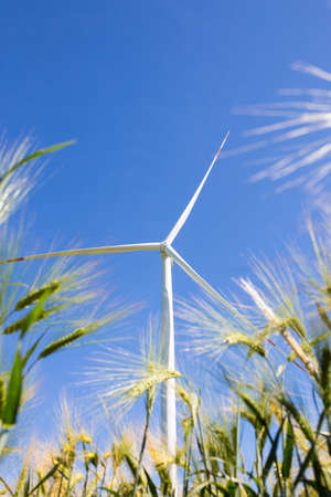 Wind generators installed on agricultural fields. A harmonious combination of technology and natural resources.