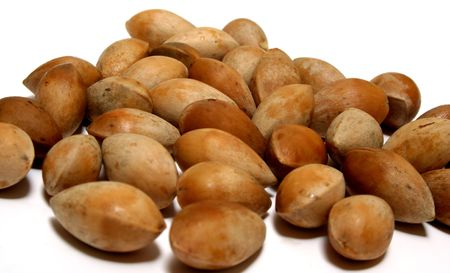 delicacy: Ginkgo nuts or seeds - a delicacy and important ingredient in Chinese dishes. Stock Photo