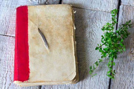 Medicinal plants, old book with herbs thyme on wooden table close up Stock Photo