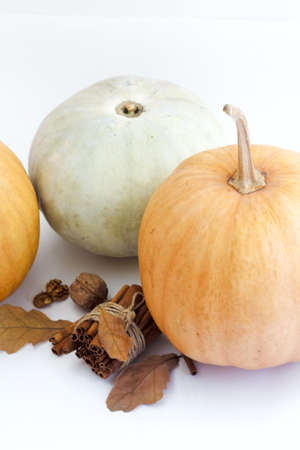 Autumn pumpkin with cinnamon and autumn leaves on white background with copy space, selective focus .