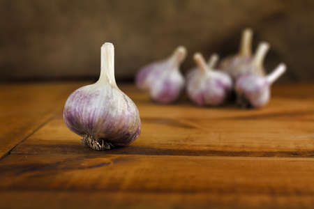 Garlic on vintage wooden table. Stock Photo