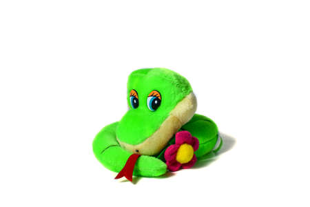 Soft toy small green striped smiling snake keeps flower isolated on white background. The concept of wisdom and humor Фото со стока