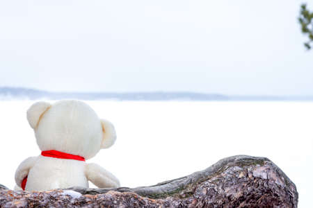 A small Teddy bear looks out at the lake. A lonely toy on the beach. The concept of sadness and waiting for a miracle Standard-Bild