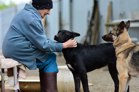 Ozersk, Chelyabinsk region, Russian Federation - 25 may 2019. An elderly woman in an animal shelter. Grandmother strokes the black dog's head, which looks into her eyes. The concept of loneliness.