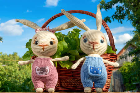 Toy bunnies in basket with flowers