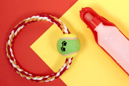 Accessories for Pets. Ring for playing with a dog, water bottle, on a red and yellow background