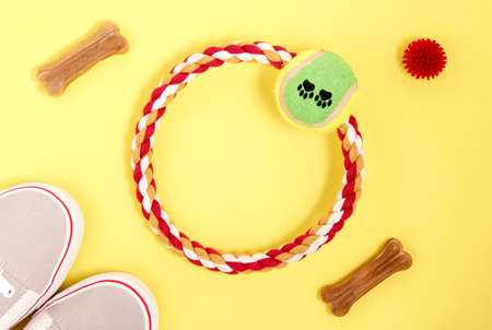 Accessories for Pets. Treats, food, balls, a ring for playing with a dog