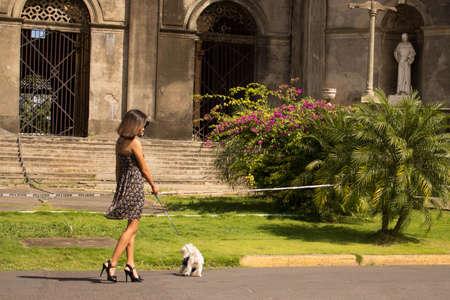Girl walking with her dog Stockfoto