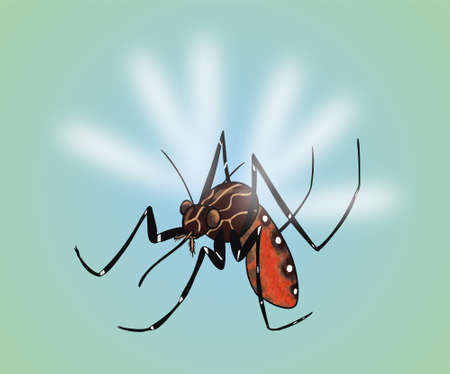 A vector illustration of a Mosquito Stock Illustratie