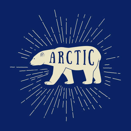 arctic: Vintage arctic white bear with slogan. Vector illustration