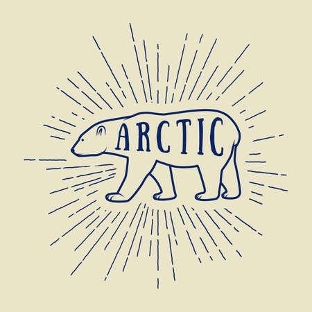 slogan: Vintage arctic white bear with slogan. Vector illustration