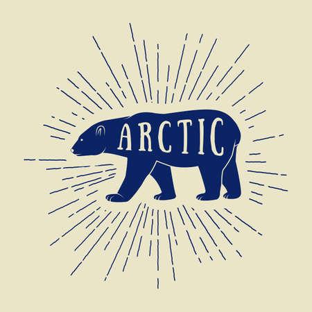 oso blanco: Vintage oso blanco ártico con el lema. Ilustración vectorial