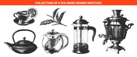 Vector engraved style tea drink collection for posters, decoration, logo, emblem and print. Hand drawn sketches of in monochrome isolated on white background. Detailed vintage woodcut style drawing.