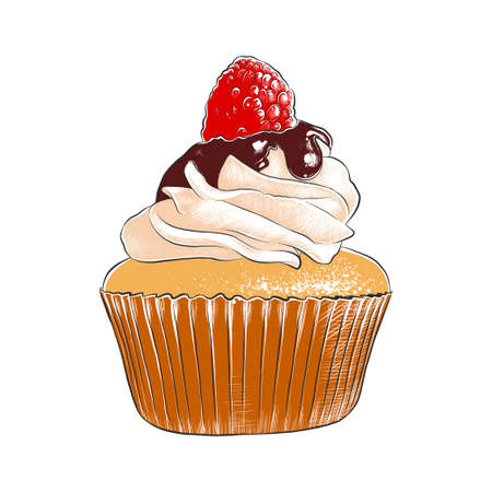 Vector engraved style illustration for posters, decoration, menu, packaging and print. Hand drawn sketch of colorful cupcake isolated on white background. Detailed vintage woodcut style drawing.