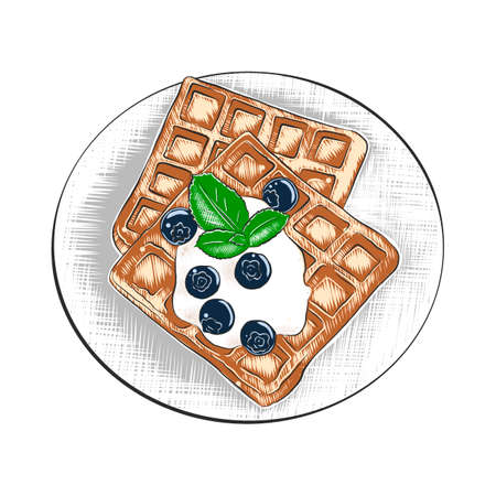 Vector engraved style illustration for posters, decoration and print. Hand drawn sketch of belgian waffles in colorful isolated on white background. Detailed vintage woodcut style drawing.