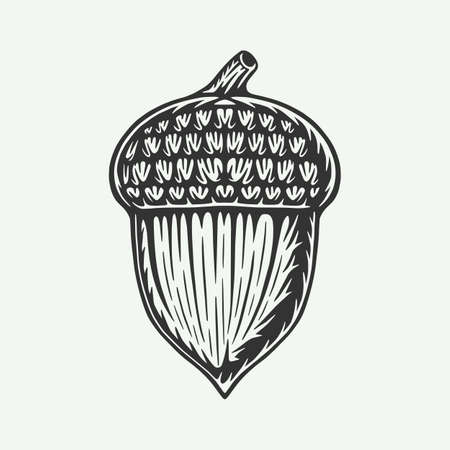 Vintage retro woodcut forest camping acorn. Can be used like emblem, logo, badge, label. mark, poster or print. Monochrome Graphic Art. Vector. Ilustração