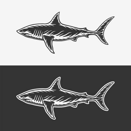 Vintage retro woodcut white shark. Can be used like emblem, logo, badge, label. mark, poster or print. Monochrome Graphic Art. Vector.