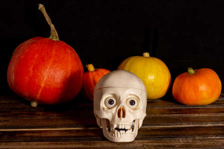 Skull and pumpkins on the table. the concept of Halloween. Happy Halloween.