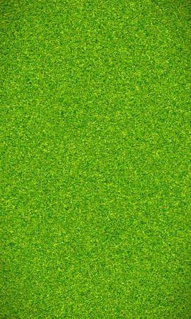 Beautiful green grass texture photo