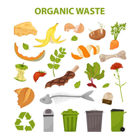 Collection of broken meat. No food wasted. Set of leftovers. Illustration for organic waste, zero waste theme and modern environmental problem.