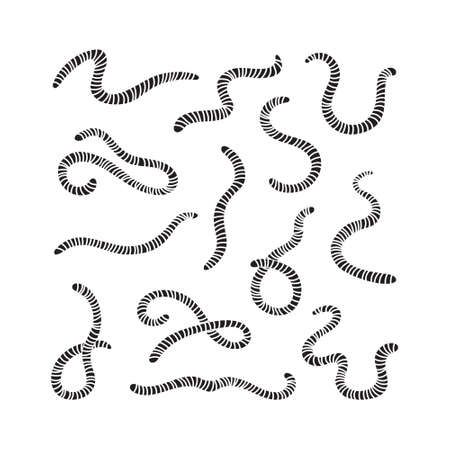 Carved silhouette of earthworms. Set of worms. Illustration of animal, nature, fishing, earth and ground.