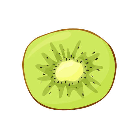 Fresh kiwi slice on white background. Flat food vector illustration. Cartoon hand drawn tropical fruit. Isolated icon. Symbol for natural female face masks with fruit acids 向量圖像